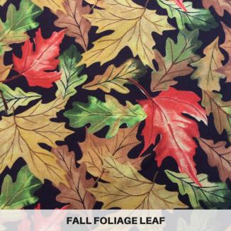 Fall Foliage Leaf