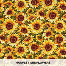 Harvest Sunflowers