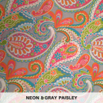 Neon & Gray Paisley