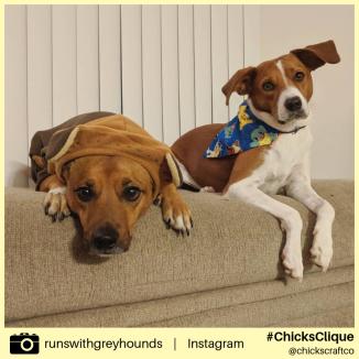 runswithgreyhounds