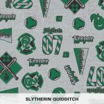 Slytherin Quidditch