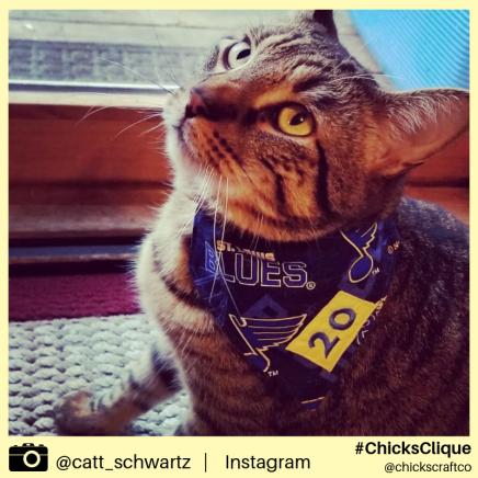 catt_schwartz (11)