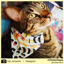 catt_schwartz 2