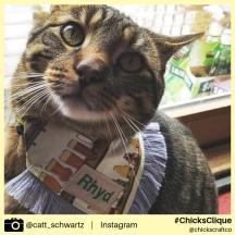 catt_schwartz (2)