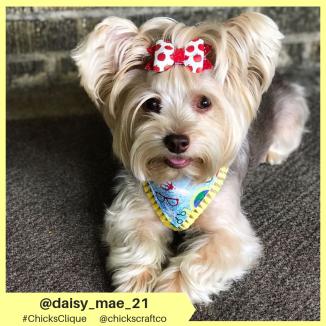 daisy_mae_21 (27)