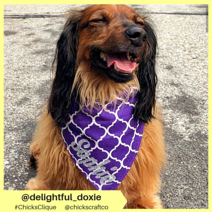 delightful_doxie (5)