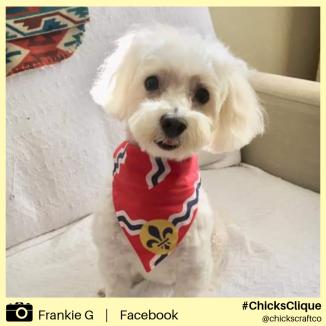 Frankie G (2)