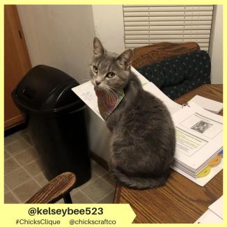 kelseybee523 (5)