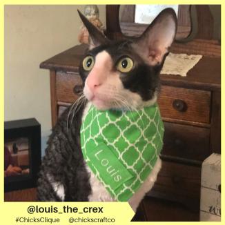 louis_the_crex (19)