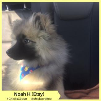 Noah H