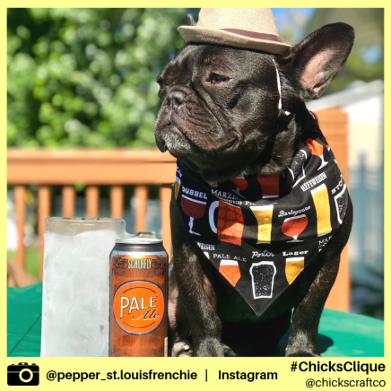 pepper_st.louisfrenchie (4)