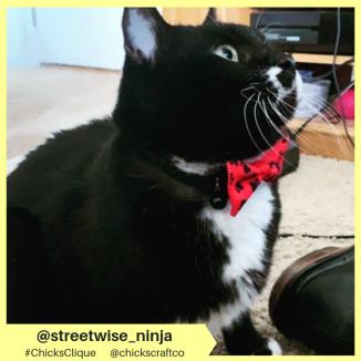 streetwise_ninja
