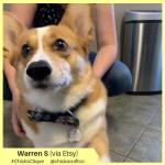 Warren S