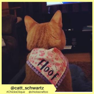 catt_schwartz (3)