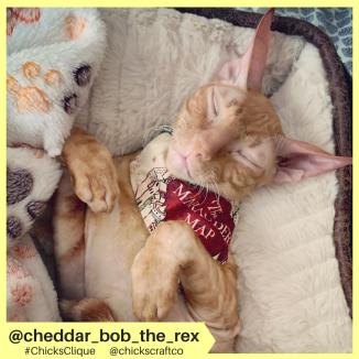 cheddar_bob_the_rex