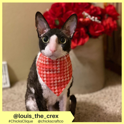 louis_the_crex (3)