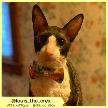 louis_the_crex (5)