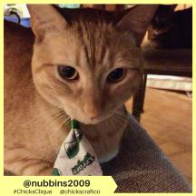 nubbins2009 (2)