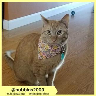 nubbins2009