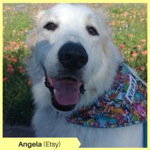 Angela (Etsy)