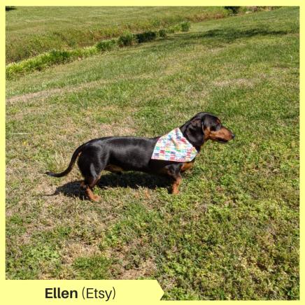 Ellen (Etsy)