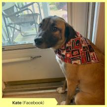 Kate K Facebook