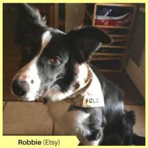 Robbie (Etsy) (2)