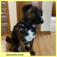 Samantha (Etsy)