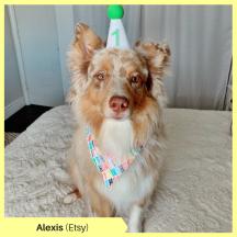 Alexis Etsy