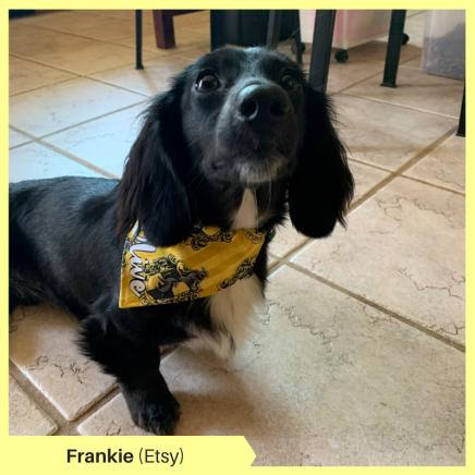 Frankie K Etsy (2)