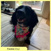Frankie K Etsy