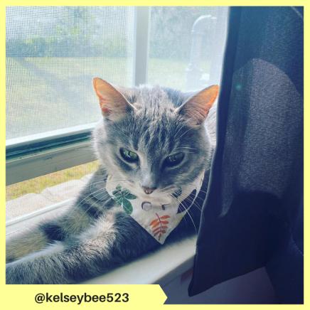 kelseybee523 (3)