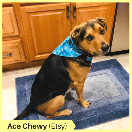 Ace Chewy D Etsy