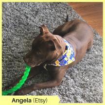 Angela H Etsy