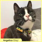 Angelica Etsy (2)