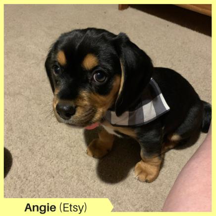 Angie S Etsy