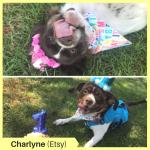 Charlyne P Etsy