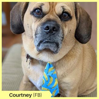 Courtney R FB