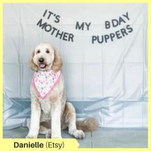 Danielle K Etsy
