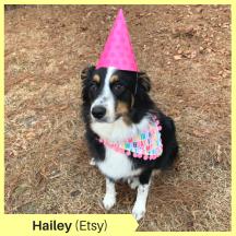 Hailey M Etsy