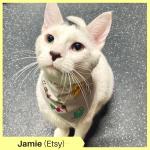 Jamie K Etsy
