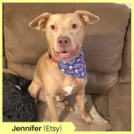 Jennifer G Etsy