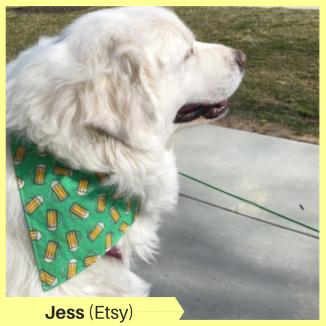 Jess A Etsy