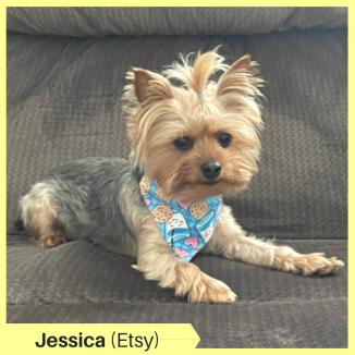 Jessica S Etsy
