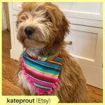 kateprout Etsy