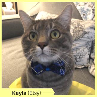 Kayla Etsy