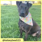 kelseybee523 (2)