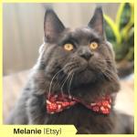 Melanie P Etsy