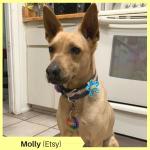 Molly P Etsy
