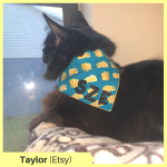 Taylor B Etsy